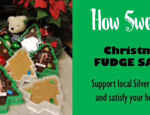 Christmas Tree Fudge SALE